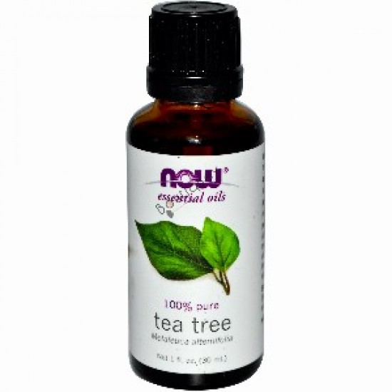 Now Essential Oils, Tea Tree 1 oz
